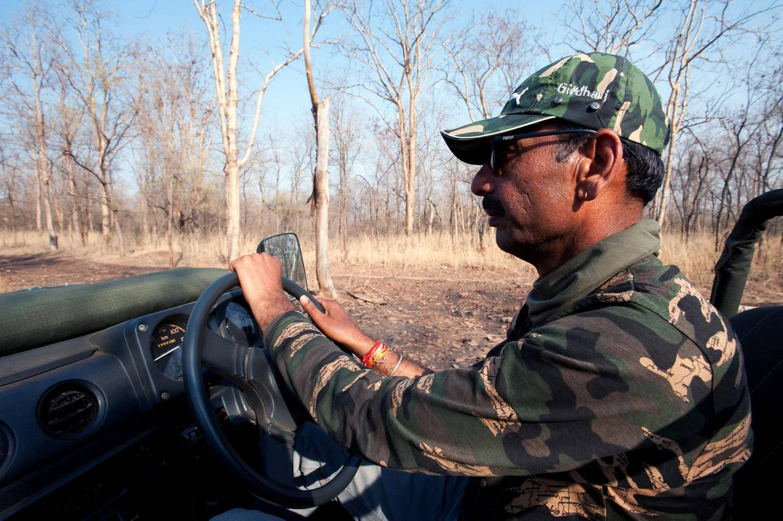 Driving safari in the Kuno-Palpur Wildlife Sanctuary, Madhya Pradesh. Photo by Amar Grover