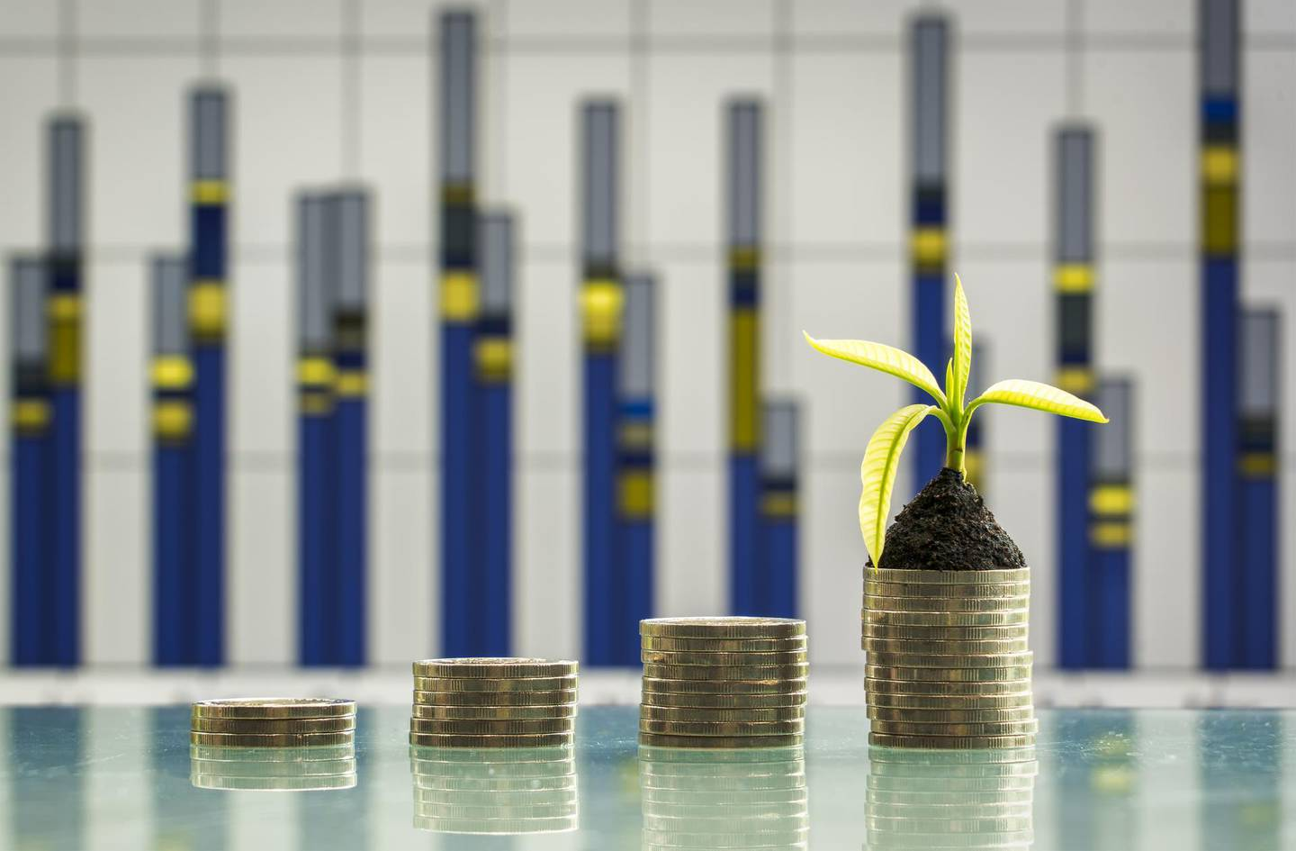 Tree growing on stacks of coins on nature background. Saving, accounting and financial concept.
