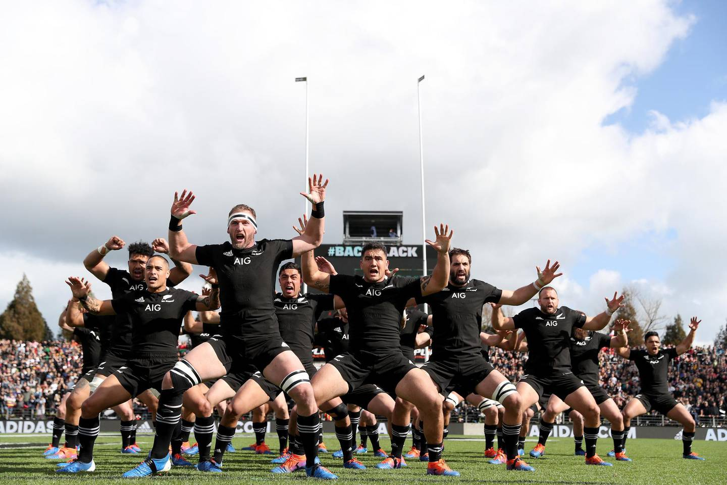 HAMILTON, NEW ZEALAND - SEPTEMBER 07: The All Blacks perform the haka ahead of the rugby Test Match between the New Zealand All Blacks and Tonga at FMG Stadium on September 07, 2019 in Hamilton, New Zealand. (Photo by Hannah Peters/Getty Images)