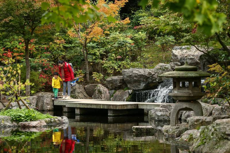 LONDON, ENGLAND - OCTOBER 10: Members of the public watch the koi fish in the Kyoto Garden at Holland Park on October 10, 2020 in London, England. Temperatures during the day on Saturday will be between 10C and 14C, but set to plunge as low as 1C overnight. (Photo by Hollie Adams/Getty Images)