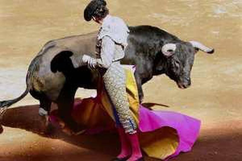 epa02032350 Mexican bullfighter Fernando Ochoa in action with his first bull 'Chaparron' de 485kg, at the 16th bullfight of the big season at the bullring in Mexico City, Mexico, 14 February 2010.  EPA/MARIO GUZMAN *** Local Caption ***  02032350.jpg *** Local Caption ***  02032350.jpg