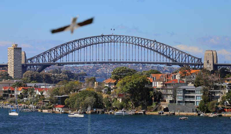 A seagull flies over the Sydney Harbour Bridge and the residential properties line the Sydney suburb of Birchgrove in Australia, August 16, 2017.  REUTERS/Steven Saphore