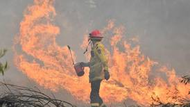 Australian businesses to rise from the ashes of a season charred by bushfires