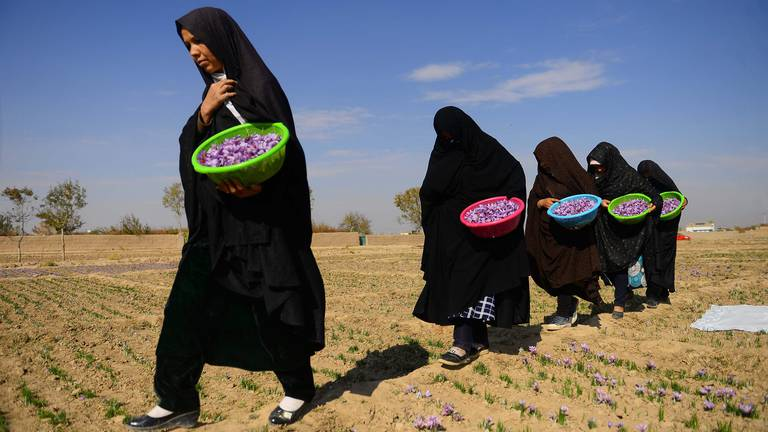 An image that illustrates this article Female Afghan business owner promises push back on Taliban demands