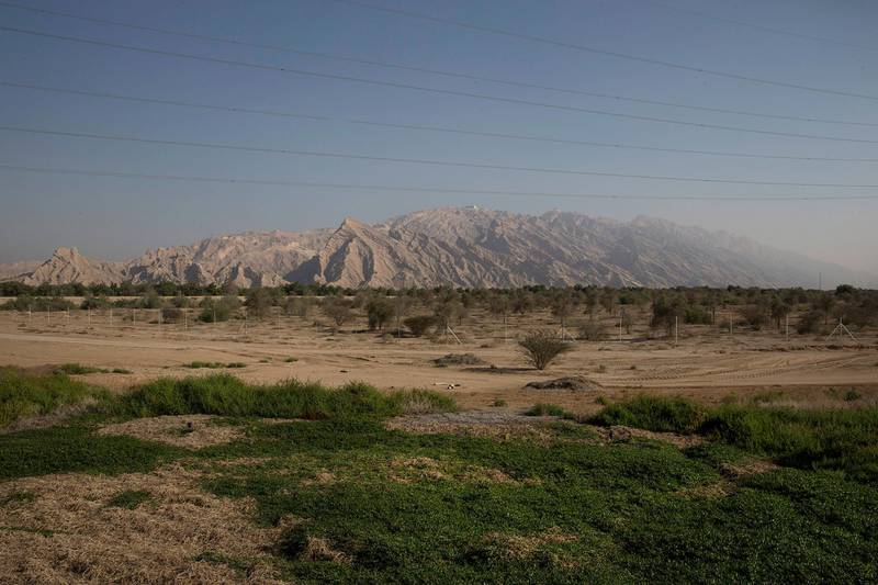 AL Hayer, UNITED ARAB EMIRATES, Dec. 29, 2014:   A view of the Jebel Hafeet (1,249 m) (4,098 ft) mountain on the outskirts of Al Ain at the UAE-Oman border. Jebel Hafeet is one of the UAE's tallest mountains and a very popular attraction for tourists and locals alike. (Silvia Razgova / The National)  /  Usage:  undated  /  Section: AL   /  Reporter:  standalone *** Local Caption ***  SR-141229-jebelhafeet02.jpg