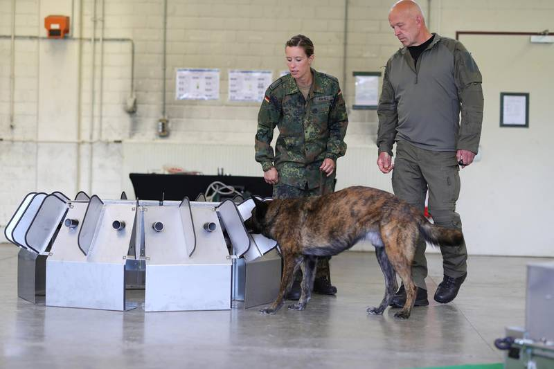 ULMEN, GERMANY - JULY 24: Members of the Bundeswehr, the German armed forces, lead a dog to a test device that is trained to detect Covid-19 infections in humans at the Bundeswehr center for dog training during the novel coronavirus pandemic on July 24, 2020 in Ulmen, Germany. The Bundeswehr is cooperating with the Tierärztliche Hochschule Hannover veterinary school to train dogs to detect Covid-19 through their sense of smell in saliva samples from humans. The training program is still in its early phase. (Photo by Andreas Rentz/Getty Images)