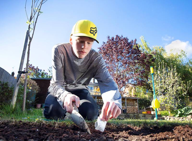 Picturing Lockdown.32 Hallamshire Drive, Fulwood, Sheffield, South Yorkshire.Owen Bull, just before his 14th birthday, planting vegetable seeds in the garden due to the difficulty in getting food deliveries during Covid 19 lockdown. Courtesy Historic England