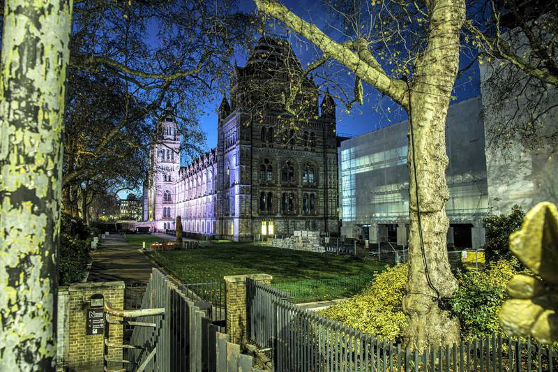 Locations in London during lockdown in the lead up to Christmas 2020. Natural History Museum