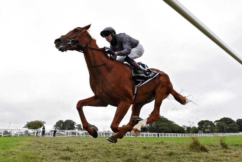 Horse Racing - Derby Festival - Epsom Downs Racecourse, Epsom, Britain - July 4, 2020  Serpentine ridden by Emmet McNamara wins the Investec Derby, as racing resumed behind closed doors after the outbreak of the coronavirus disease (COVID-19)   George Selwyn/Pool via REUTERS     TPX IMAGES OF THE DAY