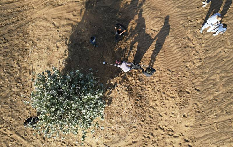 SHARJAH, UNITED ARAB EMIRATES , January 16– 2021 :- Members of the off roaders club collecting trash during the desert clean up drive at the Al Badayer desert area in Sharjah. (Pawan Singh / The National) For News/Stock/Online/Instagram/Standalone/Big Picture. Story by Nick Webster
