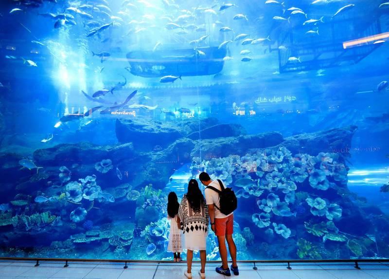 Dubai, United Arab Emirates - August 04, 2019: Standalone. Visitors to Dubai mall look at the huge aquarium. Sunday the 4th of August 2019. Dubai Mall, Dubai. Chris Whiteoak / The National