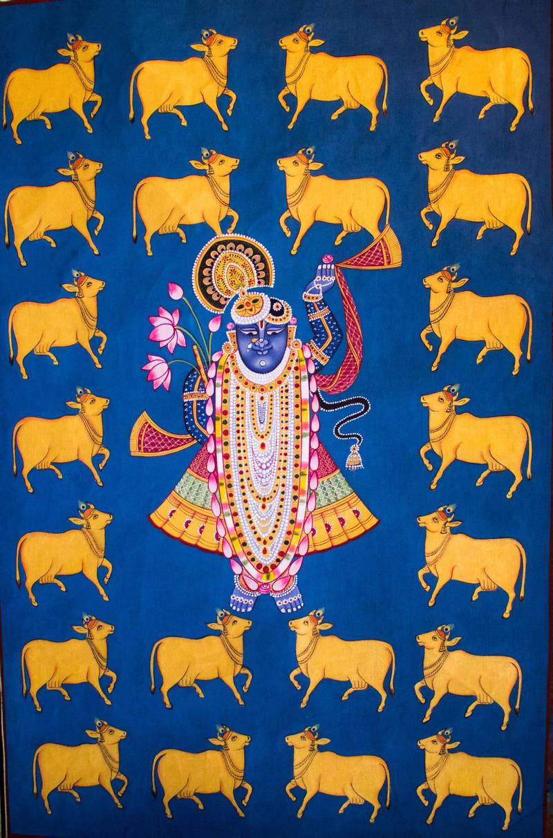 Pichwai paintings are devotional paintings made on cloth that narrate the tales of Lord Krishna and are usually hung at the backdrop of Lord Shrinath (a form of Krishna). Courtesy: Sanket Jain