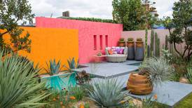 Four of the finest at the RHS Chelsea Flower Show