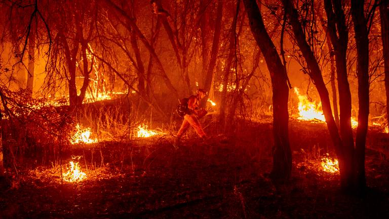 An image that illustrates this article Woman suspected of starting California bushfire is arrested