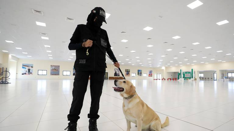 An image that illustrates this article Dubai Police dogs - in pictures