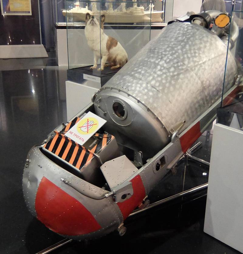 2A26075 Korabl-Sputnik 2 (Sputnik 5) on board which, Dogs Belka and Strelka, spent a day in space, on 19 August 1960 before safely returning to Earth. They were accompanied by a grey rabbit, 42 mice, two rats, flies and several plants and fungi. All passengers survived. They were the first Earth-born creatures to go into orbit and return alive. Alamy