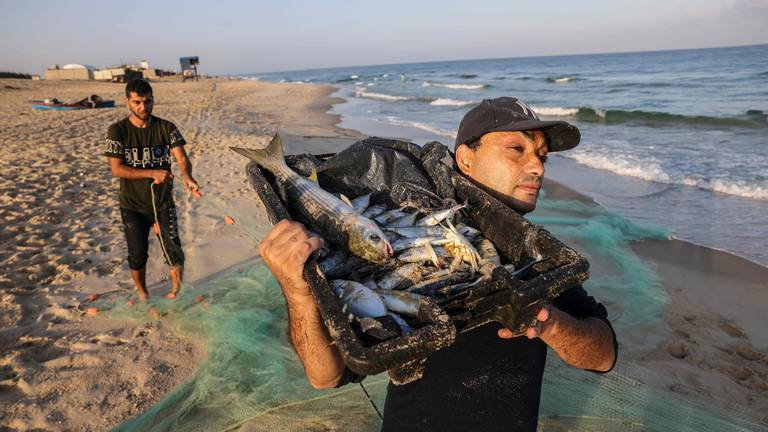 An image that illustrates this article Palestinian fishermen at work in Gaza - in pictures