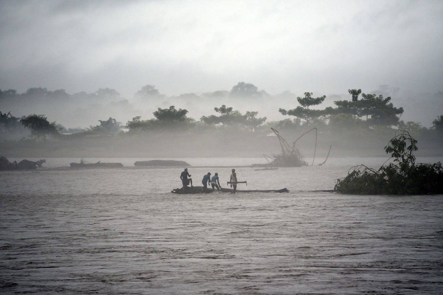 TOPSHOT - In this picture taken on July 15, 2019, Indian men catch a tree in the flooded Manas river, following heavy rainfall in Baksa district of Assam, in the North-Eastern states of India. Torrential monsoon rains swept away homes and triggered landslides across South Asia, affecting millions of people and spiking the death toll to at least 180, officials said on July 16.  / AFP / David TALUKDAR