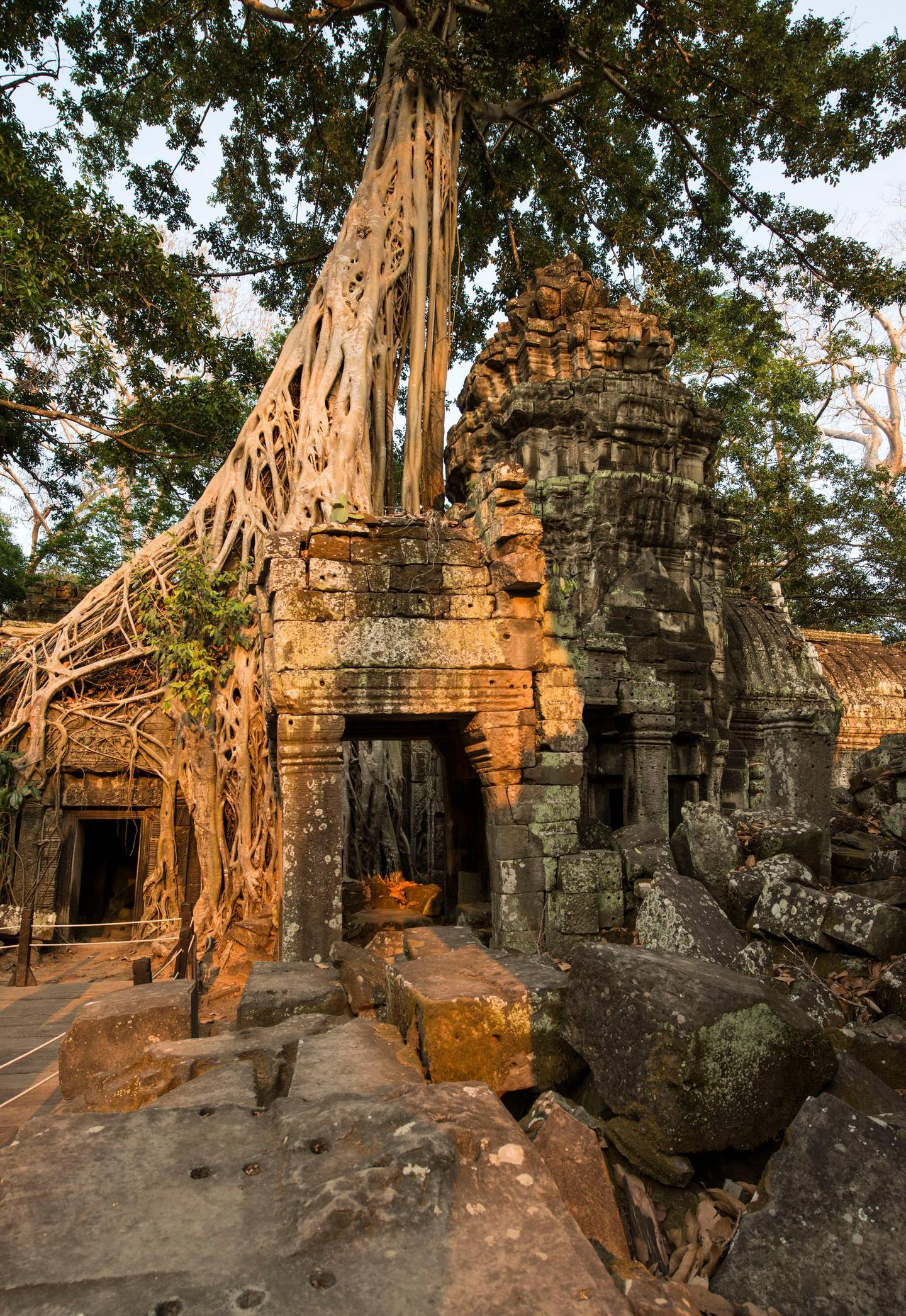Ta Prohm in Siem Reap, Cambodia,  A battle between nature and architecture in the Cambodian jungle. The Ta Prohm is one of Angkor's best visited monuments. It is known for the huge trees and massive roots growing out of its walls. Getty Images