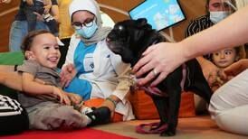 Millie the pug lifts spirits of young patients at Dubai hospital