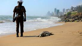 Sri Lanka chemical ship fire kills at least 100 turtles and 12 dolphins