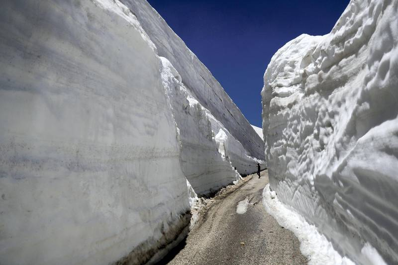 People take pictures on a road, surrounded by 10m walls of snow, on May 28, 2019, in the northern Lebanese village of Ainata al-Arz, 1620 m above sea level. - The road has been recently serviced to allow for cars to access it. (Photo by JOSEPH EID / AFP)