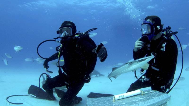 Bear Grylls and Tristan Guttridge on ocean floor with fish in Bear vs Shark (Shark Week). Courtesy Discovery