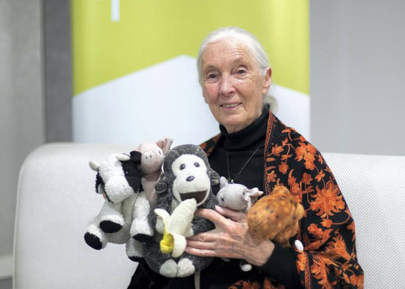DUBAI, UNITED ARAB EMIRATES. 1 FEBRUARY 2020. Dame Jane Morris Goodall DBE, is an English primatologist and anthropologist.(Photo: Reem Mohammed/The National)Reporter: ASHLIEGH STEWARTSection: NA