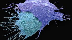 Ovarian cancer treatment is 'highly effective' and could help thousands