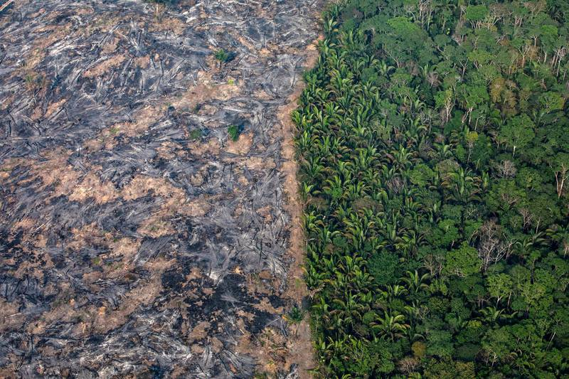 PORTO VELHO, RONDONIA, BRAZIL - AUGUST 25:  In this aerial image, A section of the Amazon rain forest that has been decimated by wild fires on August 25, 2019 in the Candeias do Jamari region near Porto Velho, Brazil. According to INPE, Brazil's National Institute of Space Research, the number of fires detected by satellite in the Amazon region this month is the highest since 2010.  (Photo by Victor Moriyama/Getty Images)