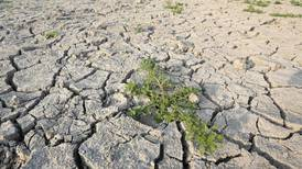 Europe's summer droughts set to intensify under unabated climate change