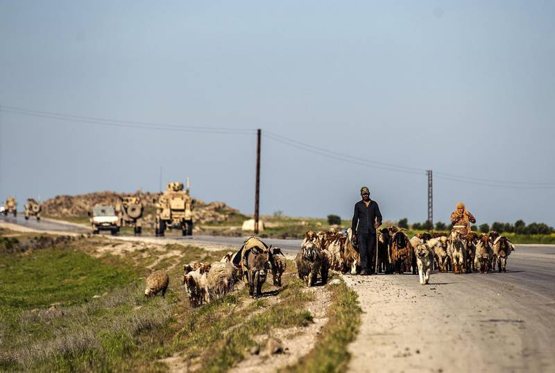 Syrian shepherds herd sheep past a US military convoy near the town of Tal Tamr in the northeastern Syrian Hasakeh province, by the border with Turkey, on April 14, 2020. (Photo by Delil SOULEIMAN / AFP)