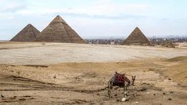 Egypt takes steps to counter coronavirus spread and its fallout