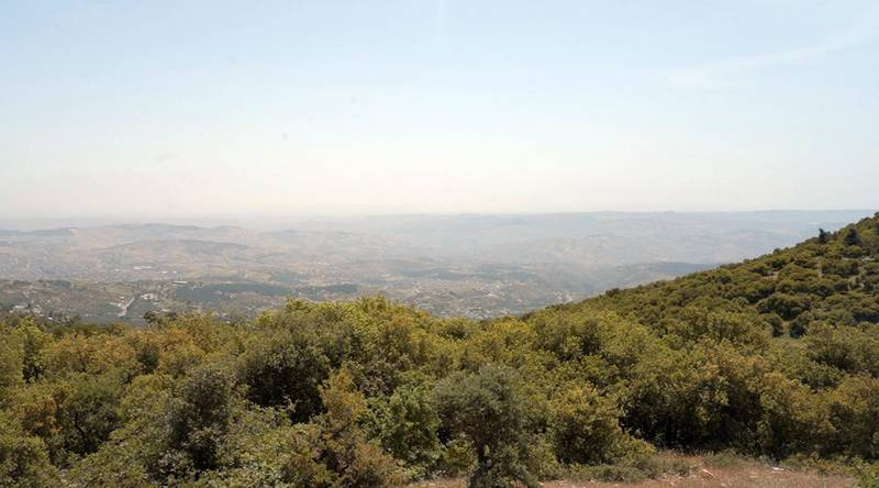 The view from Al Mawa Wildlife Reserve, in Jerash, northern Jordan. Amy McConaghy / The National