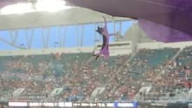 Fans rescue a falling cat at a Florida stadium