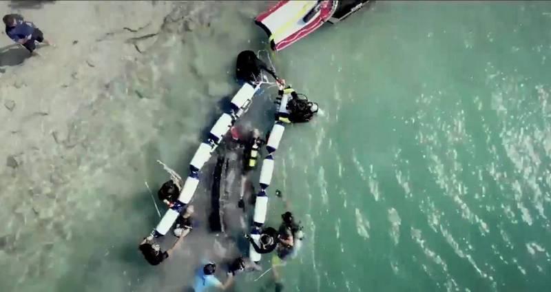 Wildlife Rescue at Man made Lagoon