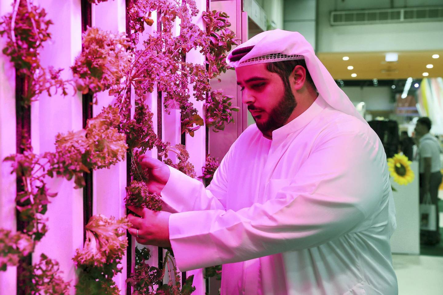 DUBAI, UNITED ARAB EMIRATES , Feb 19  – 2020 :- Abdula Aziz Al Mulla, Co Founder and CEO , Madar Farms at his stand at the Gulfood held at Dubai World Trade Centre in Dubai. (Pawan  Singh / The National) For  POAN. Story by Sophia Vahanvaty
