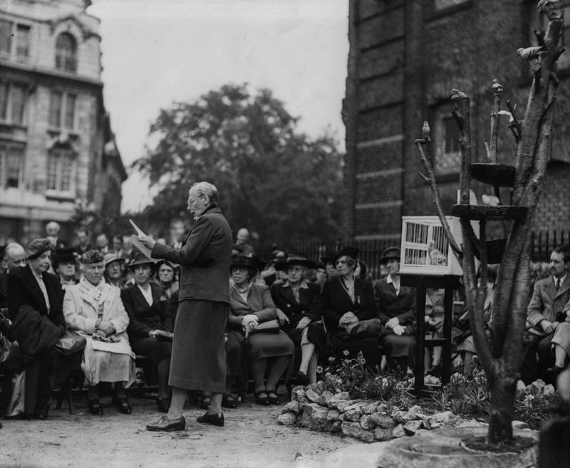 Actress Nancy Price giving a speech to the assembled crowd, with a pigeon (right, in cage) who received the Dickin Medal, at the dedication of a memorial to the birds who died in active service during the war, in the gardens of All Hallow's Church, London, October 4th 1946. (Photo by Reg Burkett/Keystone/Getty Images)