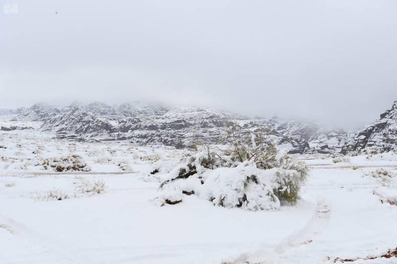 Heavy snowfall on the heights of Jebel Al-Lawz in Tabuk. SPA