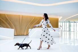 11 dog-friendly places to stay in Dubai, Ras Al Khaimah, Hatta and Abu Dhabi
