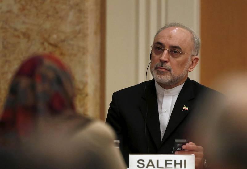 FILE PHOTO: Iran's head of the country's Atomic Energy Organization, Ali Akbar Salehi attends a seminar at the Japan Institute of International Affairs in Tokyo, Japan, November 5, 2015. .  REUTERS/Yuya Shino/File Photo