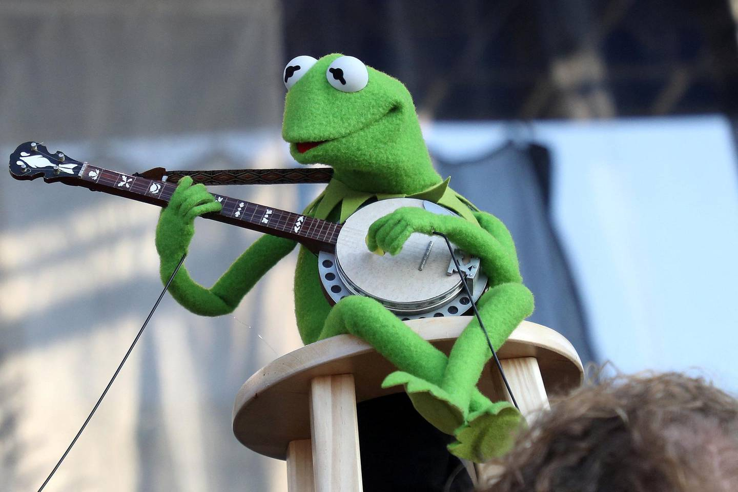 """NEWPORT, RHODE ISLAND - JULY 28: Kermit the Frog performs during the """"If I Had A Song"""" tribute set during day three of the 2019 Newport Folk Festival at Fort Adams State Park on July 28, 2019 in Newport, Rhode Island.   Mike Lawrie/Getty Images/AFP (Photo by Mike Lawrie / GETTY IMAGES NORTH AMERICA / Getty Images via AFP)"""