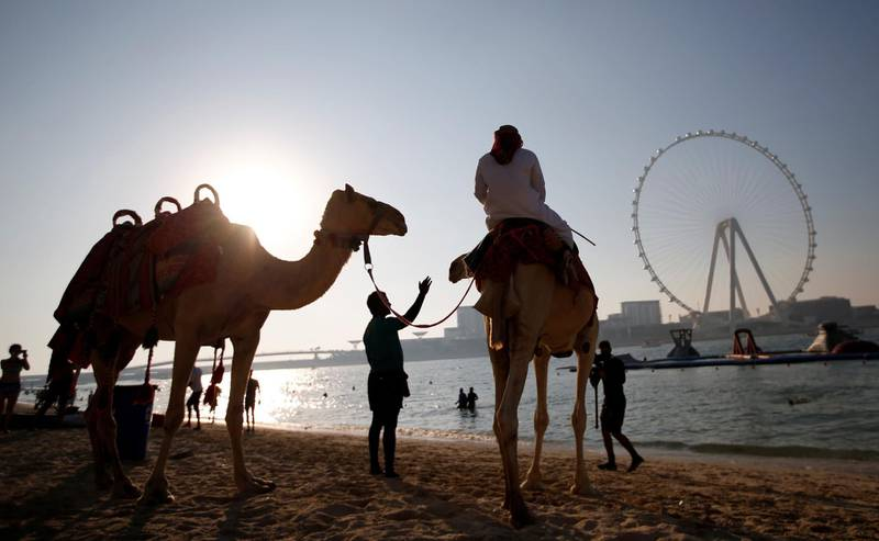 epa08789708 A man rides a camel walking past by Beachgoers during the Aqua Challenge in Gulf emirate of Dubai, United Arab Emirates, 31 October 2020. Dubai Sports Council has organized many sports events after lifting of the lockdown for COVID-19 in Dubai. Around 120 competitors took part in the Aqua Challenge taking place on 35 inflatable obstacles distributed across the 50,000 sqft Aqua Fun Waterpark at Jumeirah Beach Residence. JBR is the largest inflatable aqua park in the world, and the obstacles will be arranged in the shape of 'I Love Dubai'.  EPA/ALI HAIDER
