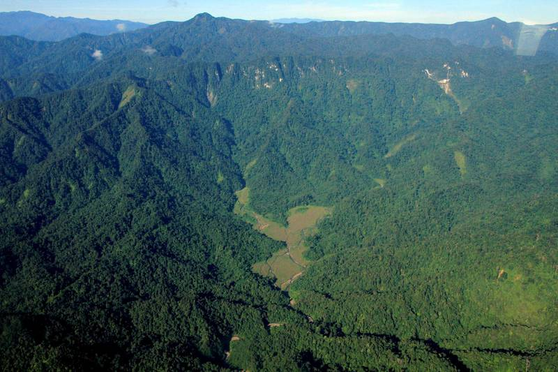 ACEH, INDONESIA - MARCH 21: Aerial view of rainforest Leuser Mountain National Park which is one of the national parks listed in UNESCO as a World Heritage Site, the Tropical Rainforest Heritage of Sumatra in Aceh, Indonesia on March 21, 2017.  (Photo by Junaidi Hanafiah/Anadolu Agency/Getty Images)