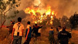 At least 69 dead as wildfires rage in Algeria