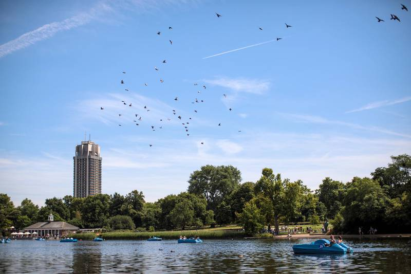 LONDON, ENGLAND - JULY 17: Brids fly overhead as groups paddle on boats on the Serpentine in Hyde Park on July 17, 2017 in London, England. Much of Britain experienced warm and sunny weather today with a maximum temperature of 27 degrees celsius in London. (Photo by Jack Taylor/Getty Images)