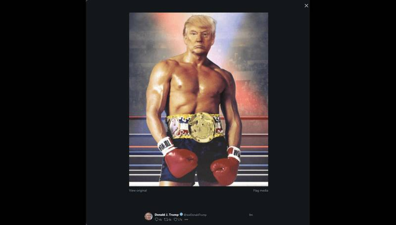 """This image shows a screen grab of the Twitter account of US President Donald Trump (@realDonaldTrump), his face surimposed on a picture of Silvester Stallone Rocky III boxing movie, on November 27, 2019 shortly after he posted it. RESTRICTED TO EDITORIAL USE - MANDATORY CREDIT """"AFP PHOTO / @RealDonaldTrump"""" - NO MARKETING - NO ADVERTISING CAMPAIGNS - DISTRIBUTED AS A SERVICE TO CLIENTS  / AFP / @realDonaldTrump / Eric BARADAT / RESTRICTED TO EDITORIAL USE - MANDATORY CREDIT """"AFP PHOTO / @RealDonaldTrump"""" - NO MARKETING - NO ADVERTISING CAMPAIGNS - DISTRIBUTED AS A SERVICE TO CLIENTS"""
