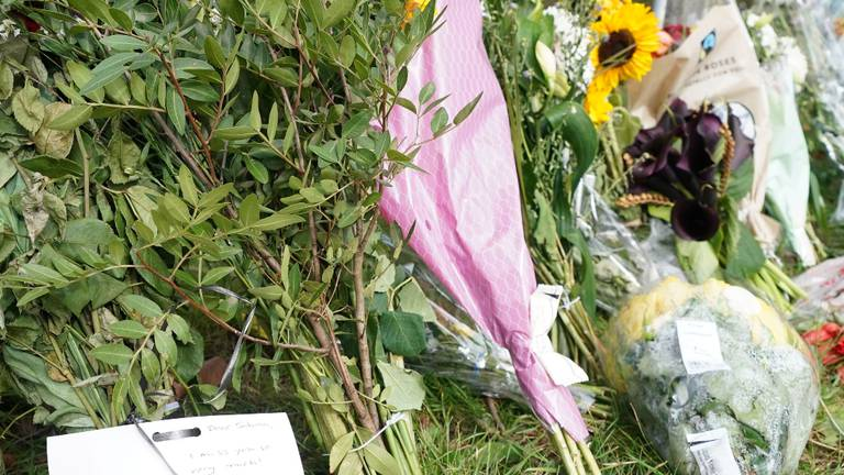 An image that illustrates this article Teacher found murdered in London park