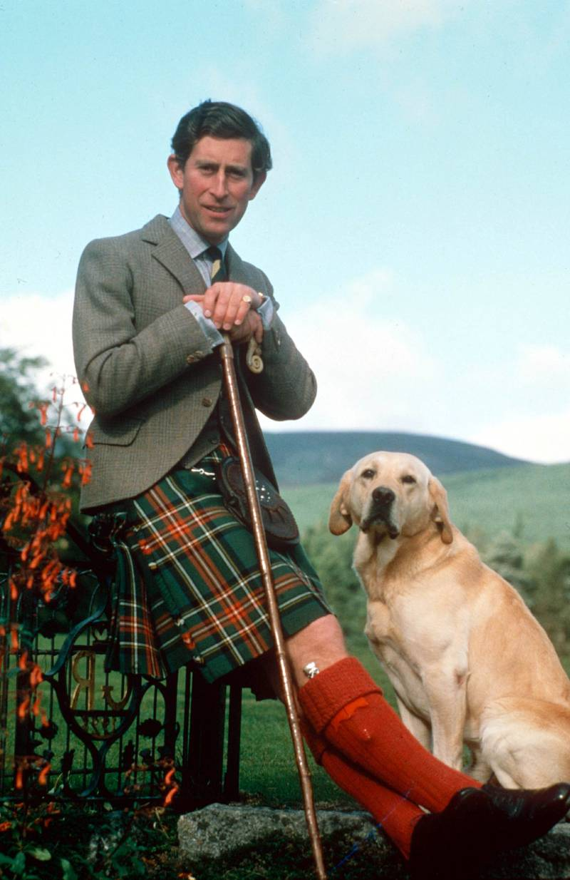 Mandatory Credit: Photo by Michael Fresco/Shutterstock (70921a) PRINCE CHARLES Prince Charles - 1978