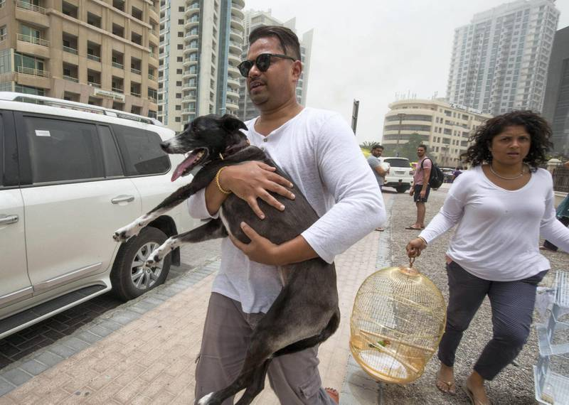 DUBAI, UNITED ARAB EMIRATES 13 MAY 2018 -Residence saving tehir pets from the  burning Zen Tower  with his dog in Marina, Dubai. Leslie Pableo for The National